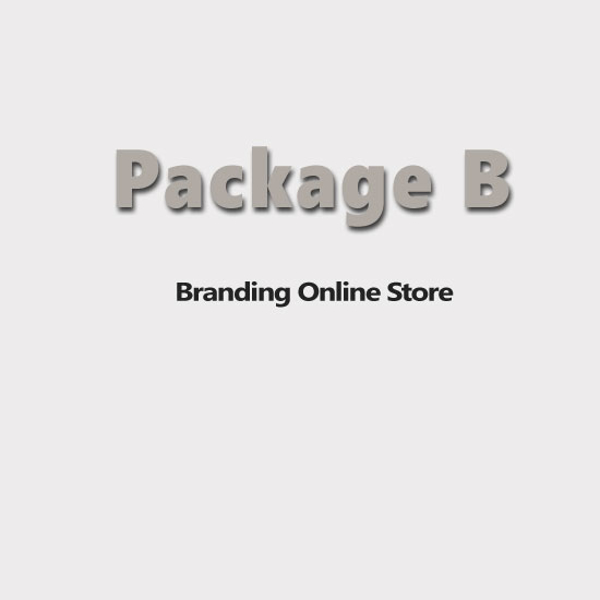 Picture of E-commerce Website-Professional Edition-Package B